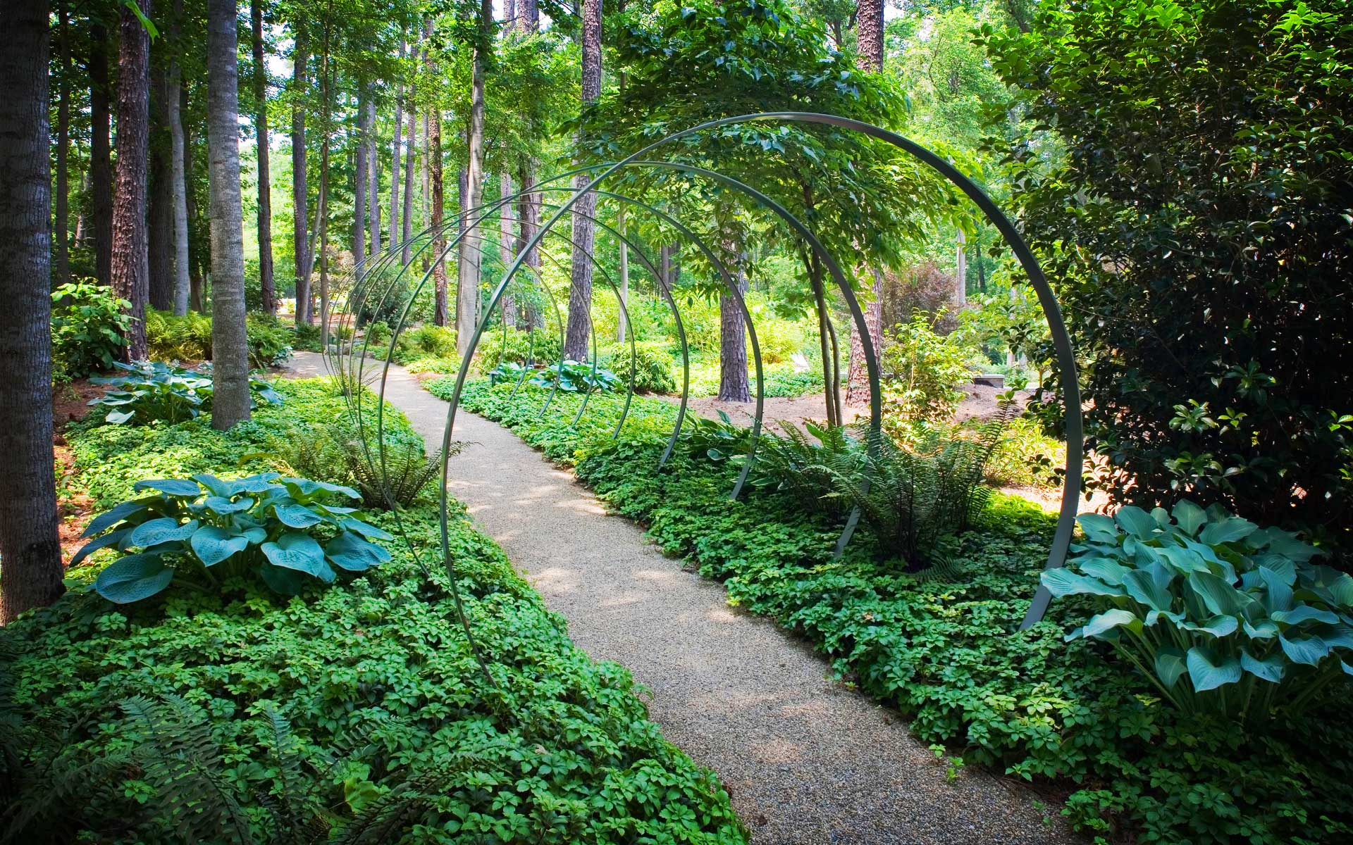 Award winning landscape architect and landscape designer in Charlotte NC